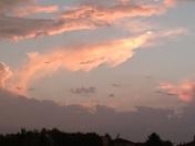In honor of shark week...this cloud showed up between storms