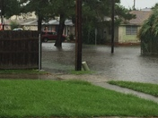 Metairie, Carrollton Ave and Cotton