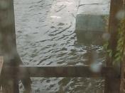 August 5,2017 flood