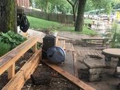 Major flooding in Prairie Lee Lake neighborhood in Lee's Summit