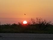Morning sunrise peek