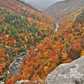 Linville Gorge wilderness, NC.
