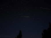 Perseid Fire Tail