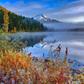 Mt. Hood National Park