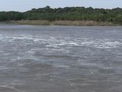 Hail Upstream