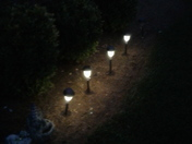 In my front yard my solar lights came on