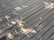 My back deck during the eclipse