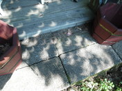 Eclipse from a different view.....