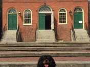 Tempe at the Old Town Hall in Salem, MA