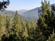 Property fire in San Lorenzo Valley