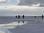Playing around the ice in late June in the high arctic