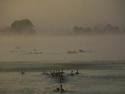 Lake Irwin in the morning