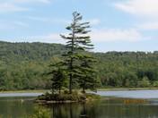 Grant's Pond.
