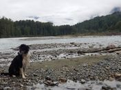 Salmon Trail