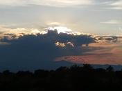 Gator in the sky