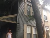 Fallen tree 37 n Mary st. 17603