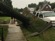 Storm damage in east York