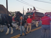 Budweiser Clydesdale tour at Mt Joy  Legion 185
