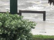 Hurricane Irma Jensen beach so Hutchison island