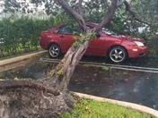 Husband's car is damaged