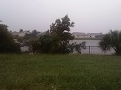 Windy in Kissimmee 535 area