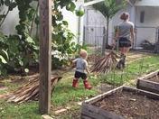 Big storm-Little Helper