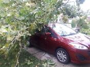 Hurricane Irma destruction in Oviesi