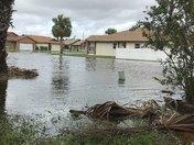 Irma aftermath Kissimmee