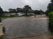 My street and backyard underwater