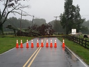 Tree took out power 101 north blueridge