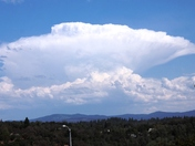 Dynamic Thunderhead