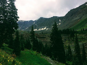 Uncompahgre National Forest