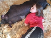 Girl Sleeping With Her Show Pig