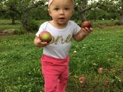 1st Birthday Apple Picking