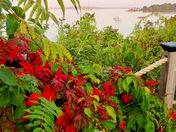 Fall morning on Casco Bay
