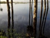 Lake Monroe at Stone Island