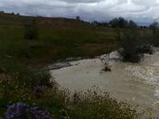 Growing River