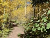 Take a Hike,