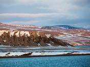 Sirmilik National Park Bylot Island