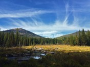 Colville National Forest