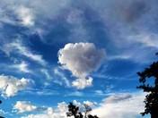 Ballooon Fiesta Cloud