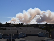 Fort Ord Controlled Burn