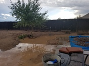 back yard flood
