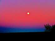 HARVEST MOON JUST BEFORE DAWN