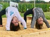 Corn box!
