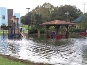 Tuscawilla Park Ocala Florida