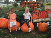 Pumpkin patch fun!