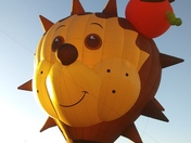 Balloon Fiesta 10-8-17