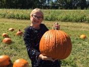 Pumpkin Picking Success
