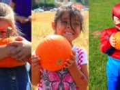 THOUSANDS OF PUMPKINS GIVEN AWAY FREE TO CHILDREN